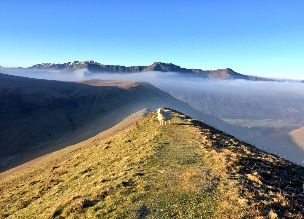 Classic Lakeland views worth preserving ©Tom Hecht